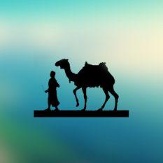 Hayatüs Sahabe