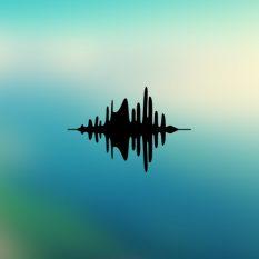 Ses Kayıtları (mp3)